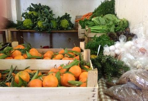 Realmuto Azienda Agricola Baucina
