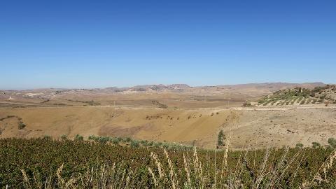 Terreni in Contrada Arroncia