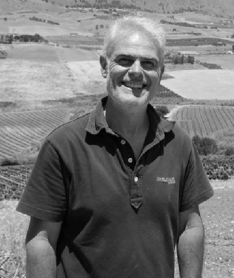 Girolamo Gelsi