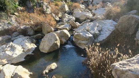 Il fiume Torto al mulino